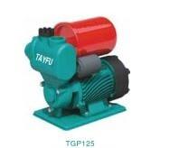 TYF - TGP125(I) Otomatik Çevresel Pompa